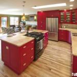 Tủ bếp tự nhiên – TBN910