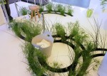 Phòng tắm với không gian sinh thái mở
